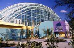 FL Aquarium - Attractions - 701 Channelside Dr, Tampa, FL, 33602, US