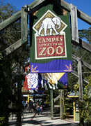 Lowery Park Zoo - Attractions - 1101 W Sligh Ave, Tampa, FL, 33604, US