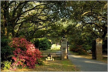 Charles Towne Landing - Ceremony Sites, Reception Sites, Attractions/Entertainment - 1500 Old Towne Road, Charleston, SC, 29407