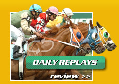 Tampa Bay Downs Thoroughbred - Attraction - 11225 Racetrack Road, Tampa, FL, 33626, United States