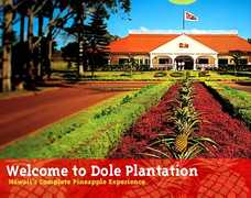 Dole Plantation - Attraction - 64-1550 Kamehameha Hwy, Wahiawa, HI, USA