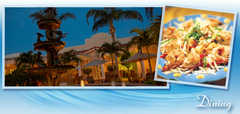 Satety Harbor Resort and Spa - Hotel - 105 North Bayshore Drive, Safety Harbor, FL, United States