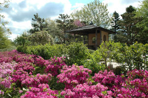Chicago Botanic Garden - Attractions/Entertainment, Parks/Recreation, Reception Sites, Ceremony Sites - 1000 Lake Cook Rd, Glencoe, IL, United States