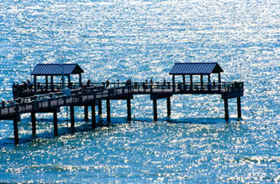 Pier 60 Concessions - Attractions/Entertainment, Beaches - 10 Pier 60 Dr, Clearwater, FL, United States