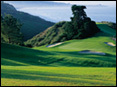 Torrey Pines Golf Course - Golf Course - 11480 North Torrey Pines Road, San Diego, CA, United States