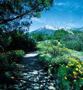 Santa Barbara Botanic Garden - Attraction - 1212 Mission Canyon Rd, Santa Barbara, CA, 93105, US