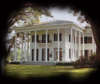 Bragg-mitchell Mansion - Reception Sites, Ceremony Sites - 1906 Spring Hill Ave, Mobile, AL, 36607, US