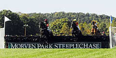 Morven park and equestrian center - Sightseeing Location - Morven Park, Leesburg, VA, United States