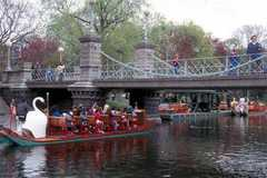 Public Gardens / Boston Common - Attraction -