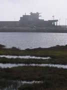 Bolsa Chica Wildlive Reserve - Parks, Hikes, and Walks -