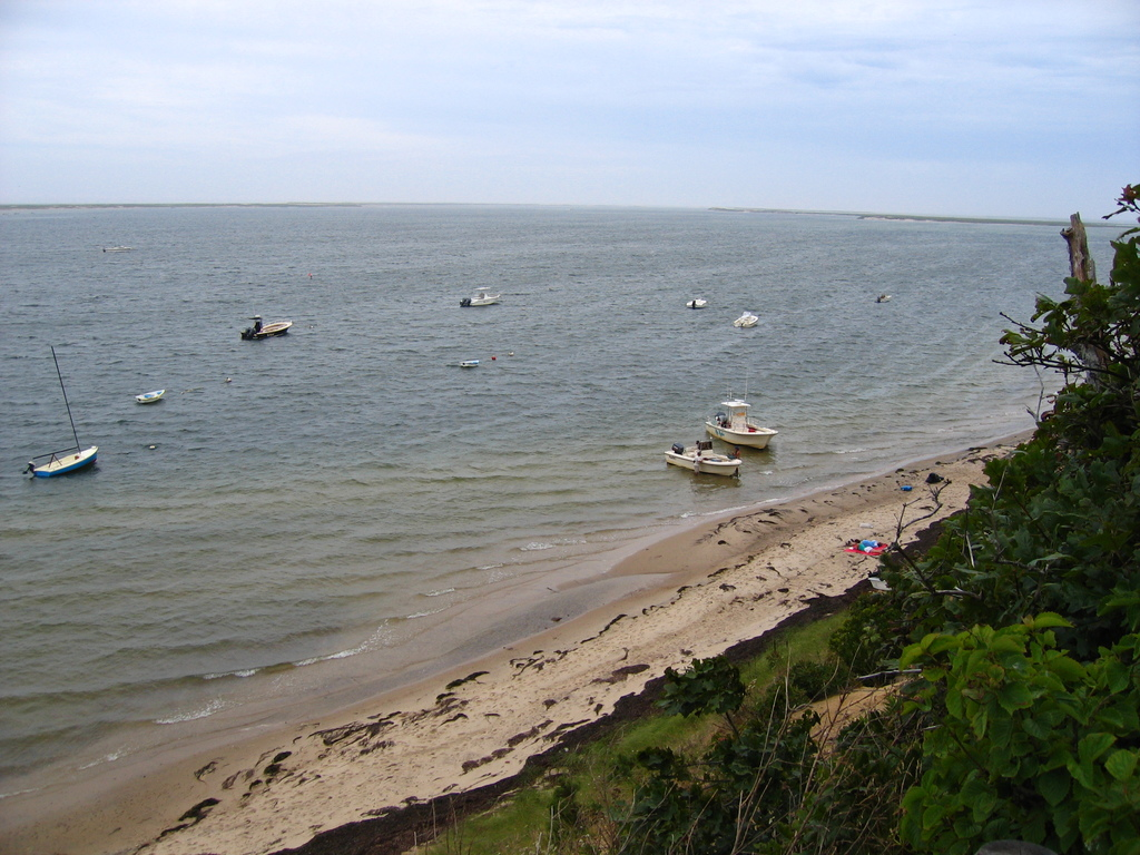 Monomoy Island Ferry - Parks/Recreation, Attractions/Entertainment - 1 Wikis Way, Chatham, MA, United States