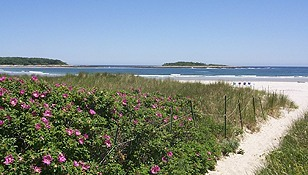 Goose Rocks Beach - Ceremony Sites, Attractions/Entertainment - 
