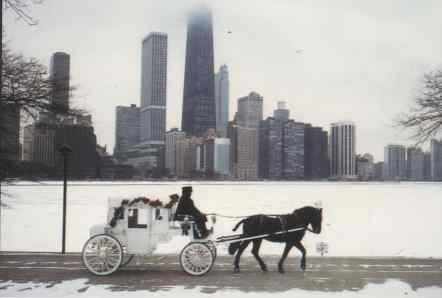 Horse And Carriage Ride - Attractions/Entertainment, Parks/Recreation - N Michigan Ave & E Pearson St, Chicago, IL, 60611