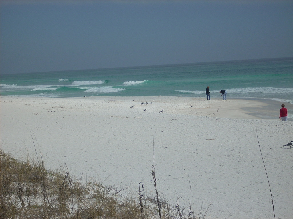 Wedding Reception - Ceremony Sites, Reception Sites - 8129 Gulf Blvd, Navarre Beach, Florida