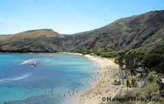 Hanauma Bay Wildlife Sanctuary - Beach - Hanauma Bay, Honolulu, HI, US