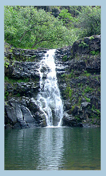 Waimea Falls - Attractions/Entertainment - 59 Kamehameha Hwy, Haleiwa, HI, United States