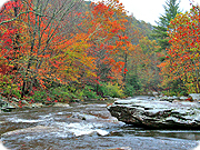 Hiking - Hiking Trails - Boone Fork Trail- Milepost 296.5, Price Lake & Trail- Milepost 297, NC