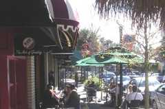 Winter Park's Park Avenue - Attraction - Park Ave, Winter Park, FL, 32789