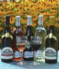 Chaddsford Winery - Attractions/Entertainment, Welcome Sites, Wineries - 632 Baltimore Pike, Chadds Ford, PA, United States