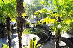 Maison St. Charles - Hotel - 1319 St Charles Ave, New Orleans, LA, 70130