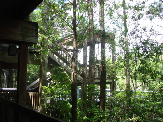 Fern Forest Nature Center - Ceremony Sites, Rehearsal Lunch/Dinner, Attractions/Entertainment - 201 S Lyons Rd, Broward County, FL, 33063, US