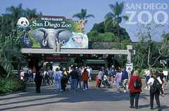 San Diego Zoo - Attractions - 2920 Zoo Dr, San Diego, CA, USA