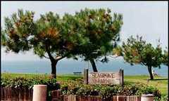 Seagrove Park-Ceremony & Reception - Ceremony & Reception - 1601 Coast Blvd, Del Mar, CA, 92014, US