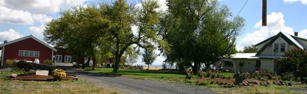 A Touch Of Country - Ceremony Sites - 18111 S Molter Rd, Rockford, WA, 99030, US