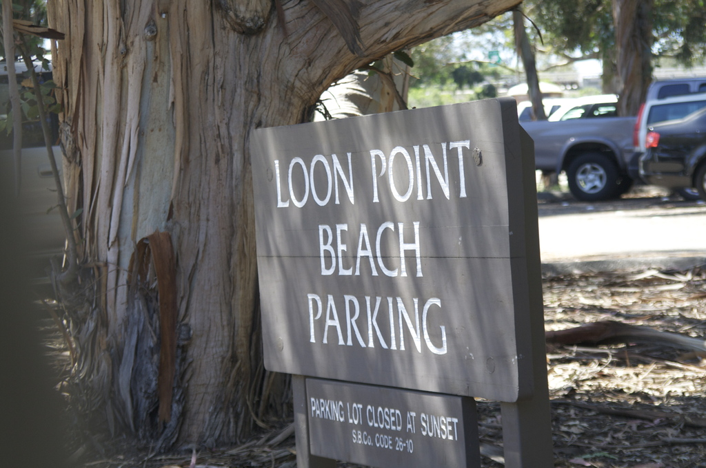 Loon Point Beach - Ceremony Sites -