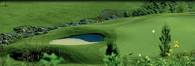 Coyote Hills Golf Course - Reception Sites, Ceremony Sites, Golf Courses - 1440 E Bastanchury Rd, Fullerton, CA, 92831