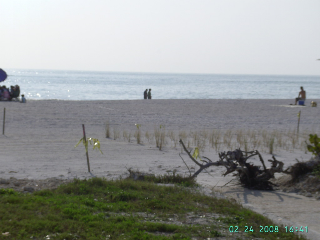 Caladesi Island State Park - Beaches, Ceremony Sites, Attractions/Entertainment - 1 Causeway Blvd, Dunedin, FL, United States