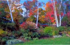 Berkshire Botanical Gardens - Attraction - Route 102 & Route 183, Stockbridge, MA, United States
