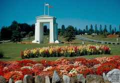 Peace Arch Park Wedding In August in Blaine, WA, US