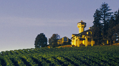 Willamette Valley Vineyards - Wineries, Ceremony Sites, Reception Sites, Attractions/Entertainment - 8800 Enchanted Way SE, Turner, OR, United States