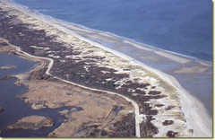 Plum Island Wildlife Refuge! - Attraction - Plum Island, Massachusetts, Massachusetts, US