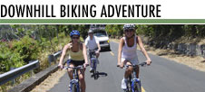 Bike Hawaii - Attraction - Honolulu, HI, 96817, US