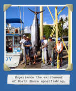 Chupu Charters Inc - Attraction - 66-167 Haleiwa Rd, Haleiwa, HI, 96712