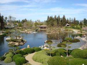 Japanese Tea Garden - Ceremony Sites, Attractions/Entertainment - 6100 Woodley Ave, Los Angeles, CA, 91406, US