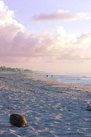 Atlantic Dunes Park - Shopping, Attractions/Entertainment - 1600 S Ocean Blvd, Delray Beach, FL, United States