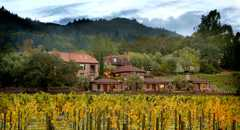 Wine Country Inn - Hotel - 1152 Lodi Lane, St Helena, CA, United States