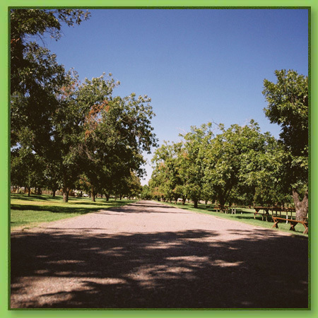 Farm At South Mountain - Ceremony Sites, Parks/Recreation, Reception Sites - 6106 S 32nd St, Phoenix, AZ, United States