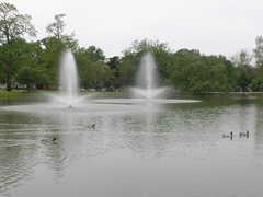 Lakeside Park - Park -