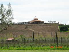 Viansa Winery - Reception - 25200 Arnold Dr., Sonoma, CA, 95476, USA