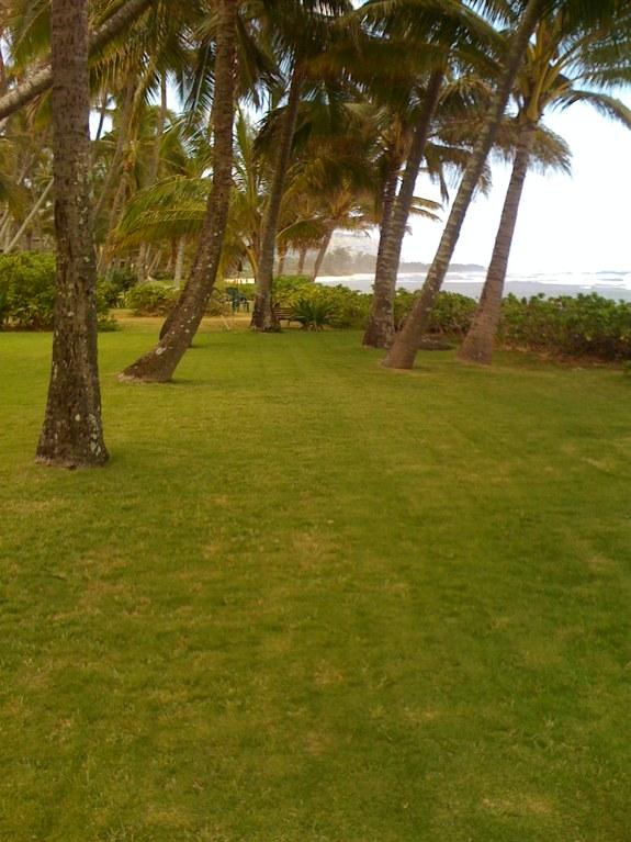 Ceremony & Reception 8-8-08 - Reception Sites - Crozier Dr, Waialua, HI, 96791, US