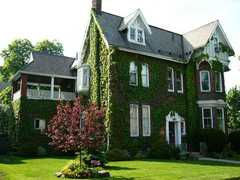 Ivy Manor - Bed and Breakfast - Hamilton, ON, CA