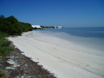 Anne's Beach - Beaches - Islamorada, FL, US