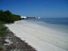 Anne's Beach - Beach - Islamorada, FL, US