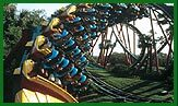 Busch Gardens - Attraction - 3000 E Busch Blvd, Tampa, FL, United States
