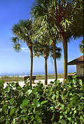 Madeira Beach Access Park - Attraction - 14400 Gulf Blvd, Madeira Beach, FL, 33708, US