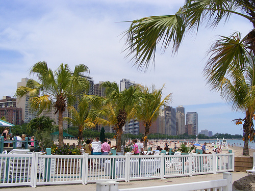 Oak Street Beach - Beaches, Attractions/Entertainment - Oak Street Beach, US